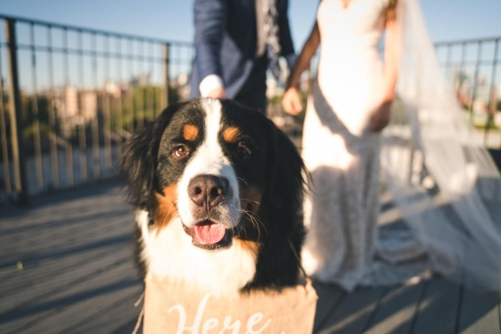 Lacuna Lofts Chicago Wedding Photos-51