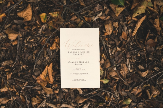 Morton Arboretum Chicago Wedding Photos-71